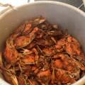 4th-Annual-Crab-Feast_H-120x120